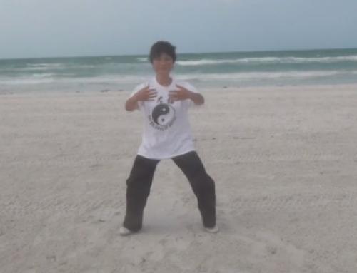 New Tai Chi Stance Video