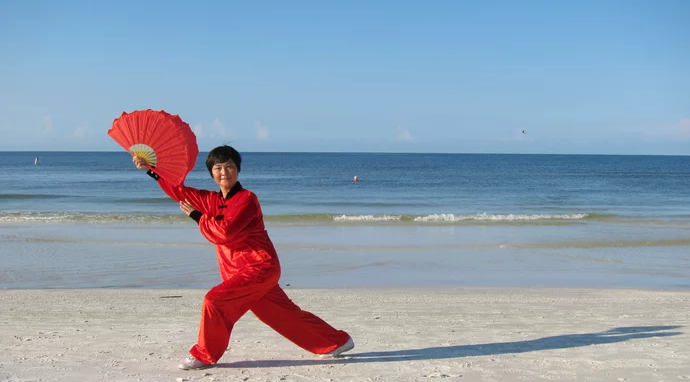 Tai Chi Double Fan