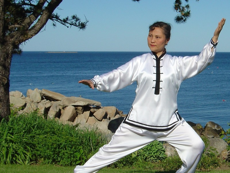 Tai Chi, Qi Gong Videos